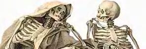 skeleton-jpeg