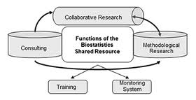 Biostatistics Model