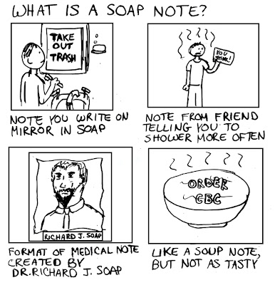Soap Notes  Essays Opinions And Curated News For The Health