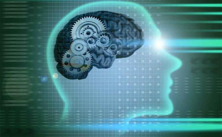 mind-investing-behavioral-finance